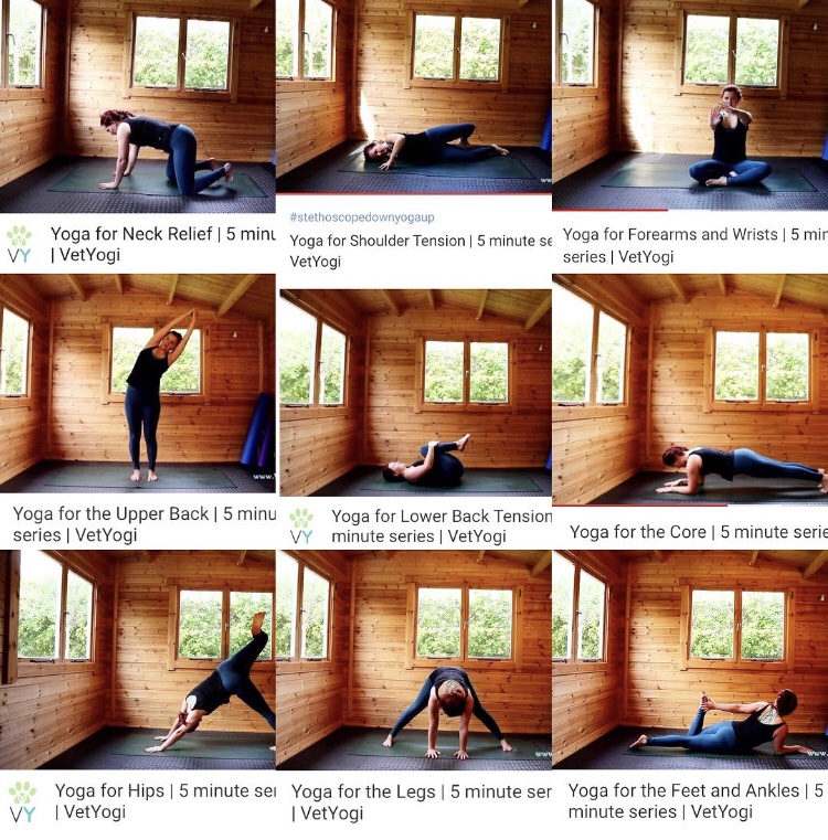 The full VetYogi 5 minute yoga sequence series is now